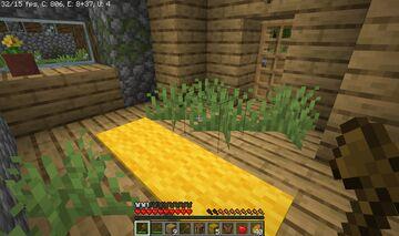 i found grass in this villagers house Minecraft Blog