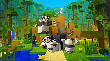 Minecraft DERP hack! Minecraft Blog