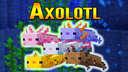 Minecraft 1.17 Axolotl Showcase Minecraft Blog