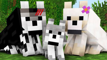 Tutorial: How to create and post mob skins? Minecraft Blog