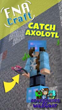 How to Catch an Axolotl (Short) Minecraft Blog