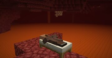 proof that villagers are immortal Minecraft Blog