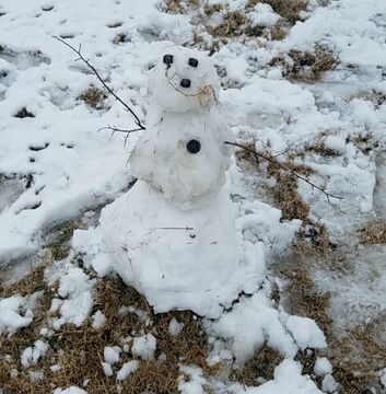 I was bored so I made another snow golem Minecraft Blog