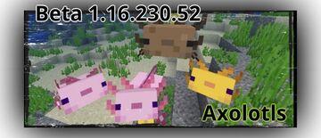 Minecraft Beta - 1.16.230.52 (Xbox One/Windows 10/Android) Minecraft Blog