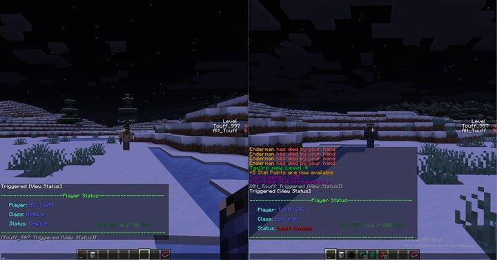 Player status window