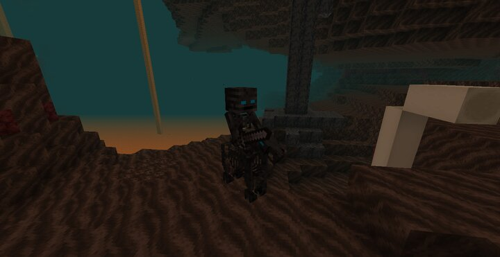 Wither Soldier