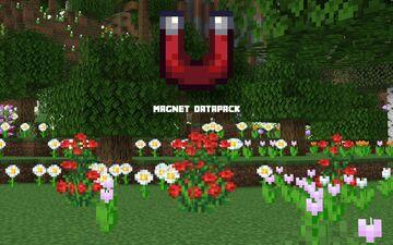 Magnet Datapack Minecraft Data Pack