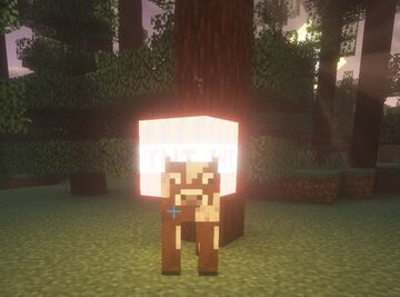 every minute spawn a cow with tnt Minecraft Data Pack