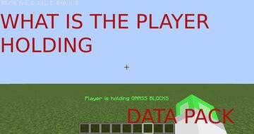 WHAT IS THE PLAYER HOLDING DATA PACK! Minecraft Data Pack