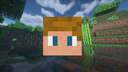 Condition/fitness in Minecraft Minecraft Data Pack