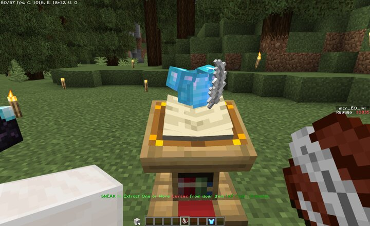 Extracting Curses from an Armor Quartz Block in Offhand  5 Levels