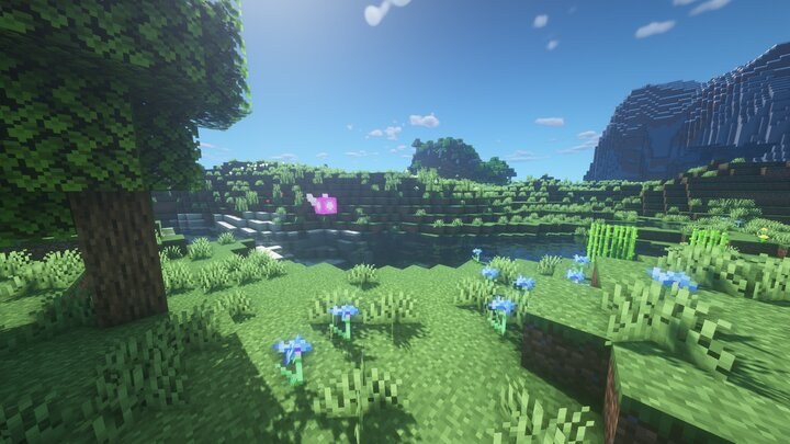A Fairy flying through the plains. This picture looks different because I was using BSL shaders instead of Sildur's. Both great shaders and you should check them out.