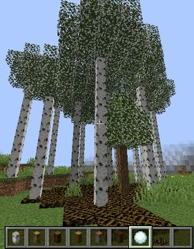 Thin logs, stick layers and frost Minecraft Data Pack