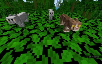 Exploding Cats (requested) Minecraft Data Pack