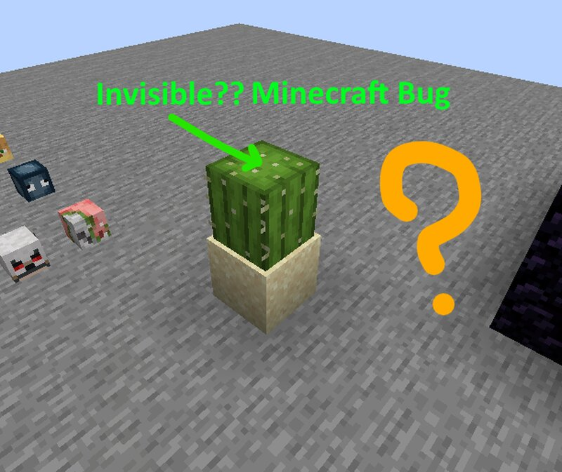 There is a bug that turns items invisible when they touch a Cactus. The item will survive the Cactus though
