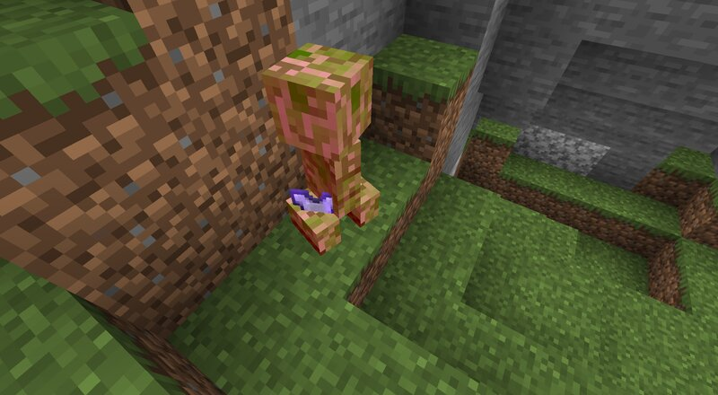 Getting a rare drop from a creeper