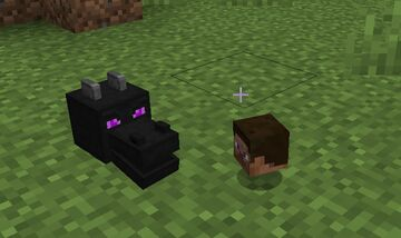 Dragon head and player head drop out when the killer is a charged creeper Minecraft Data Pack