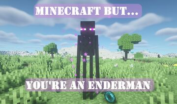 Minecraft but you're an Enderman | Data pack Minecraft Data Pack