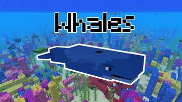 Whales in Minecraft   Datapack Minecraft Data Pack