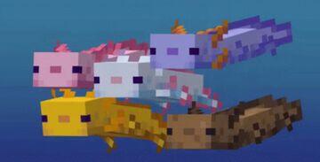 Recoloring Axolotls Minecraft Data Pack