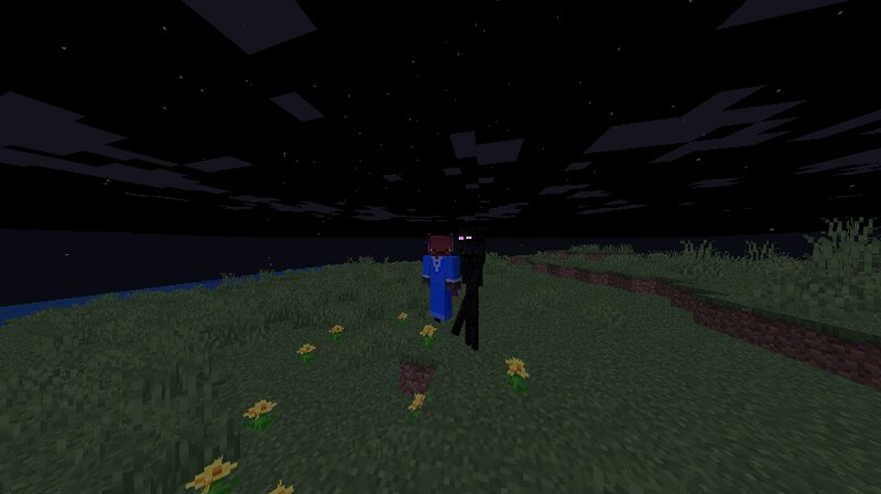 A enderman holding a player in 3rd person
