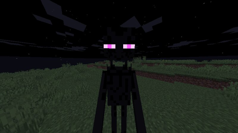 A enderman holding a player in first person