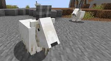 Minecraft but Goats are op Minecraft Data Pack