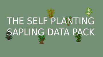 SELF PLANTING SAPLING DATA PACK Minecraft Data Pack