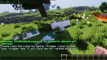 Player information commands Minecraft Data Pack