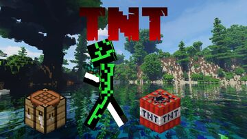 Minecraft but TNT spawns on you every 10 seconds! (Inspired by Technoblade) Minecraft Data Pack