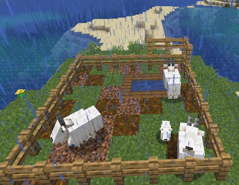 A healthy animal farm!