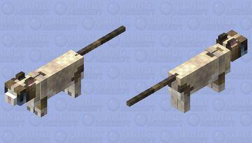 Grumpy Cat Minecraft Mob Skin