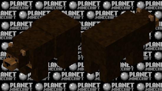 fixedbrownbear Minecraft Skin