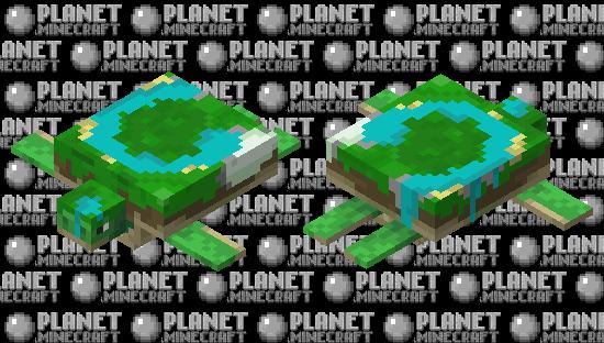 World Turtle Minecraft Skin