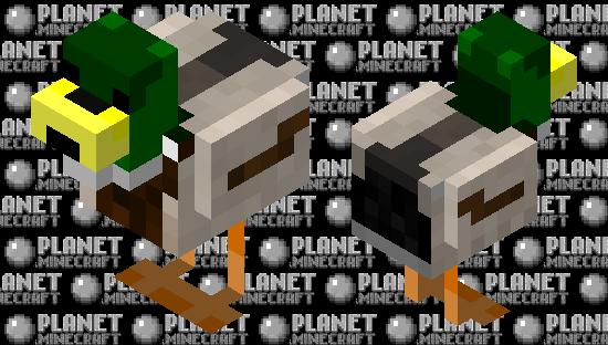 Mallard Duck Minecraft Skin