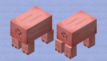 SO CURSED Minecraft Mob Skin