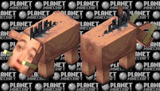 poglin Minecraft Skin