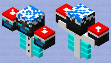 Winter Wither Minecraft Mob Skin