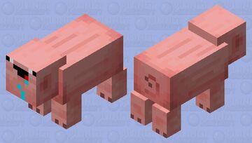 Derp pig Minecraft Mob Skin