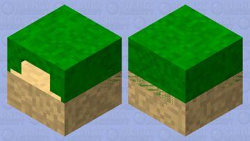 The Turtle Cove Minecraft Mob Skin