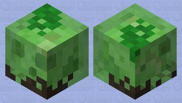 Muddy Slime Minecraft Mob Skin