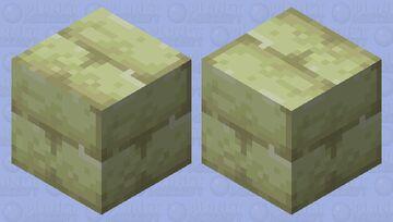 End Stone Brick Shulker Minecraft Mob Skin