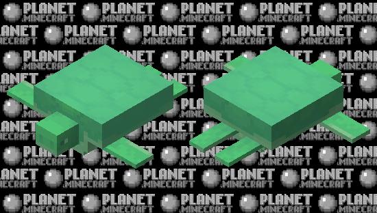 Ghost Turtle Minecraft Skin