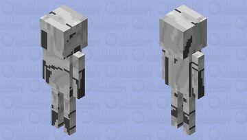 melted skelly Minecraft Mob Skin