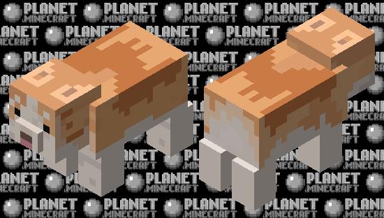 fat corgi Minecraft Skin