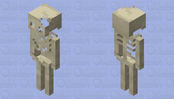 Older Skeleton Minecraft Mob Skin