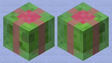 Hmmm I Wonder What This Present Is 🤔 Minecraft Mob Skin