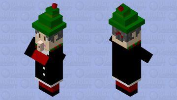Christmas Witch Minecraft Mob Skin
