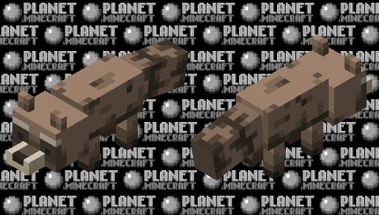 Raccoon Minecraft Skin