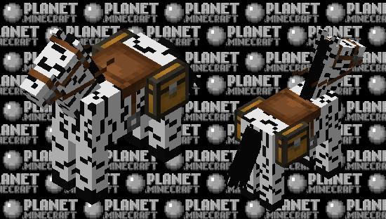 A Wild Zebra! Minecraft Skin